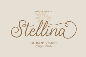 stellina calligraphy script font