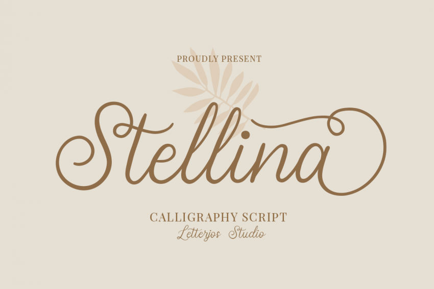 stellina calligraphy script font