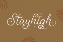 stellina calligraphy script font 5