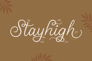 stellina calligraphy script font 5